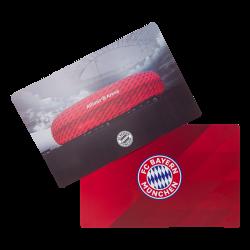FC Bayern München Tischset 2er Set Platz-Set, Platzdeckchen FCB
