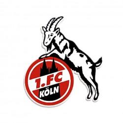 FC Köln Miniwimpel Spürbar Anders 13 x 8,5 cm 1